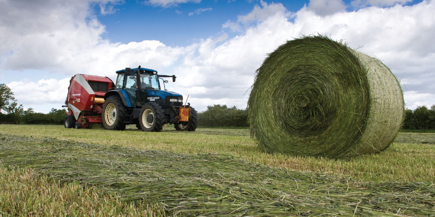 images/FrontpageSliders/fp_silage1.jpg